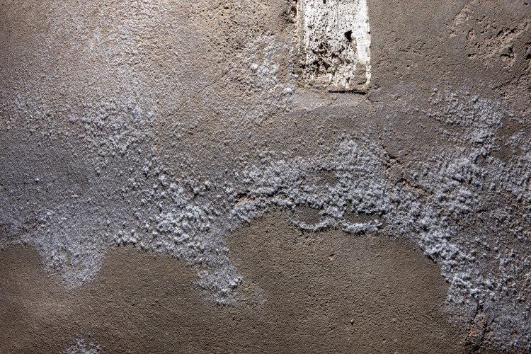salpetre-mur
